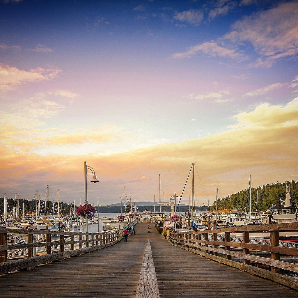 A close-up look at one of Seattle's many marinas that is home to hundreds of boats docked at shore