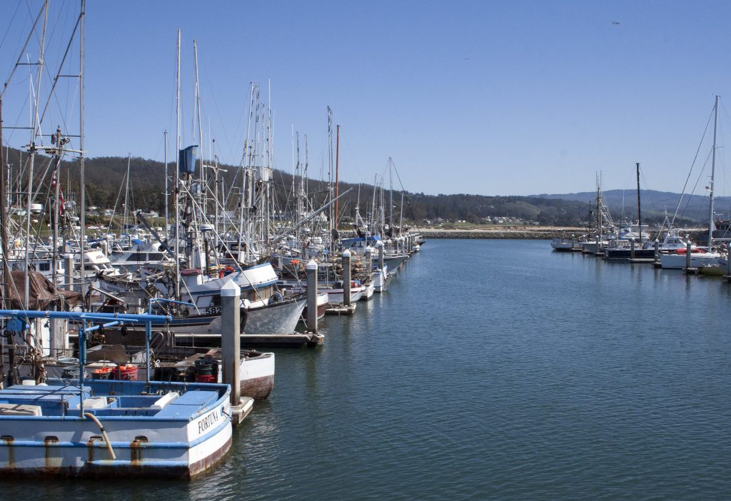 Pillar Point marina in Half moon Bay is a great spot to kayak in San Francisco for paddlers  in an urban setting.
