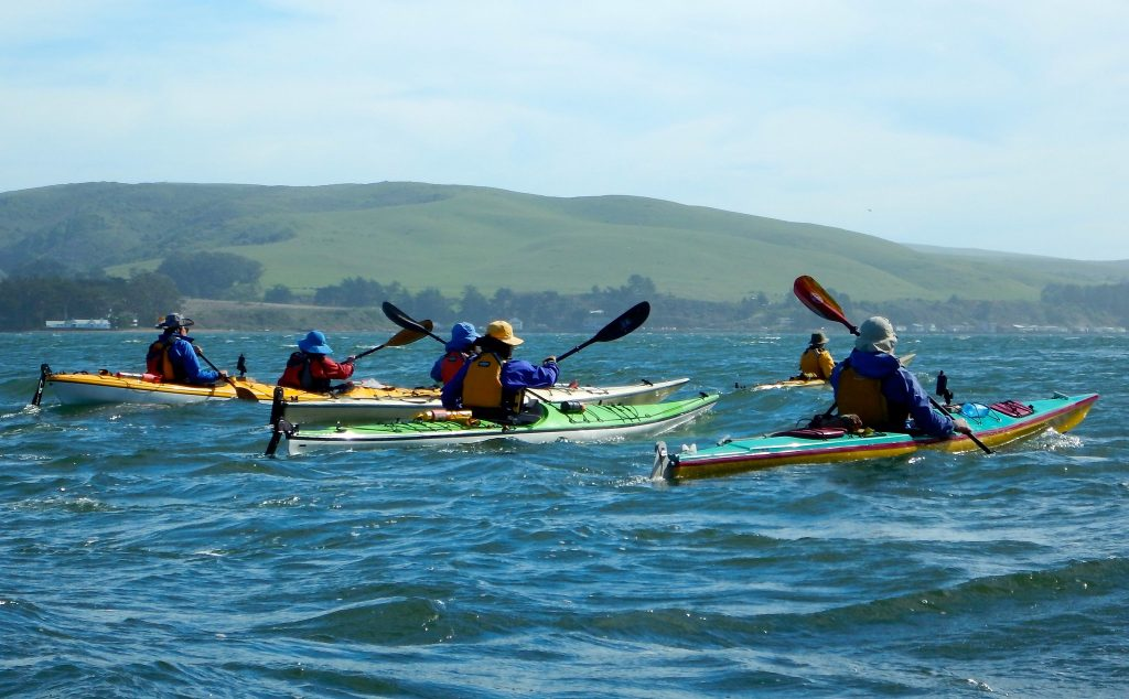 kayakers paddle by Point reyes national Seashore and explore its rocky coats and green grassy hills.