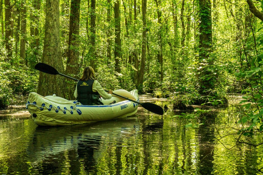 a kayaker is inspired to explore the green moss forests in this new outdoor adventure.