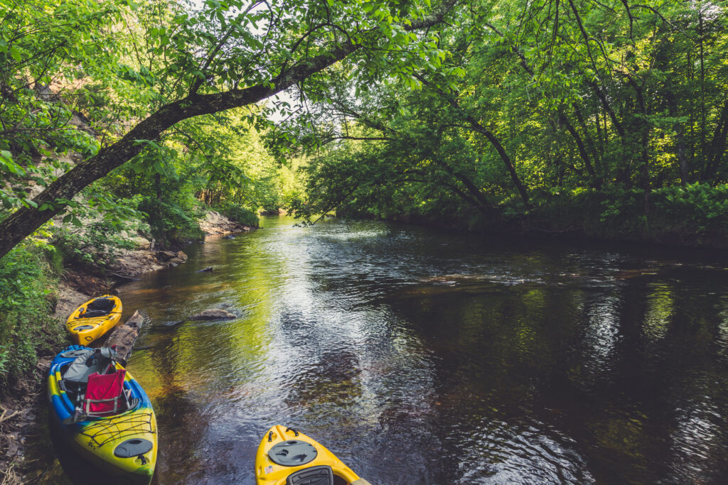 Dense wooded areas line the small river where people can go kayaking in Minneapolis.