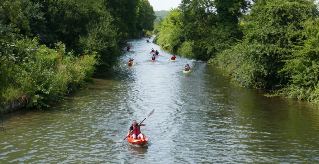 trees surround a beautiful river with kayakers paddling down it