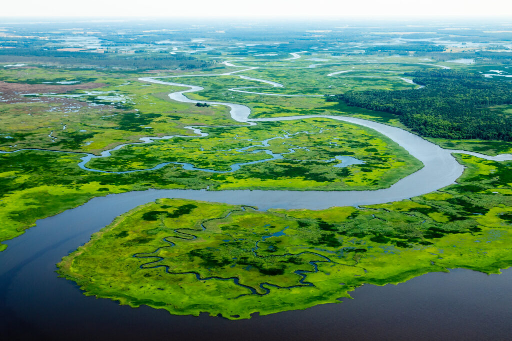 salt marshes in maryland are awesome places for all people to go canoeing and kayaking near Baltimore