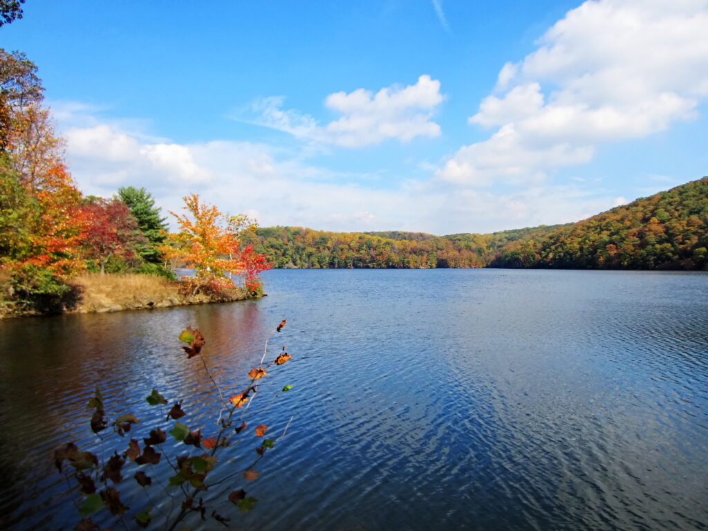The beautiful fall foliage ofLoch ravenResrvoir is abeaitufl background for  going canoeing and kayaking in Baltimore.