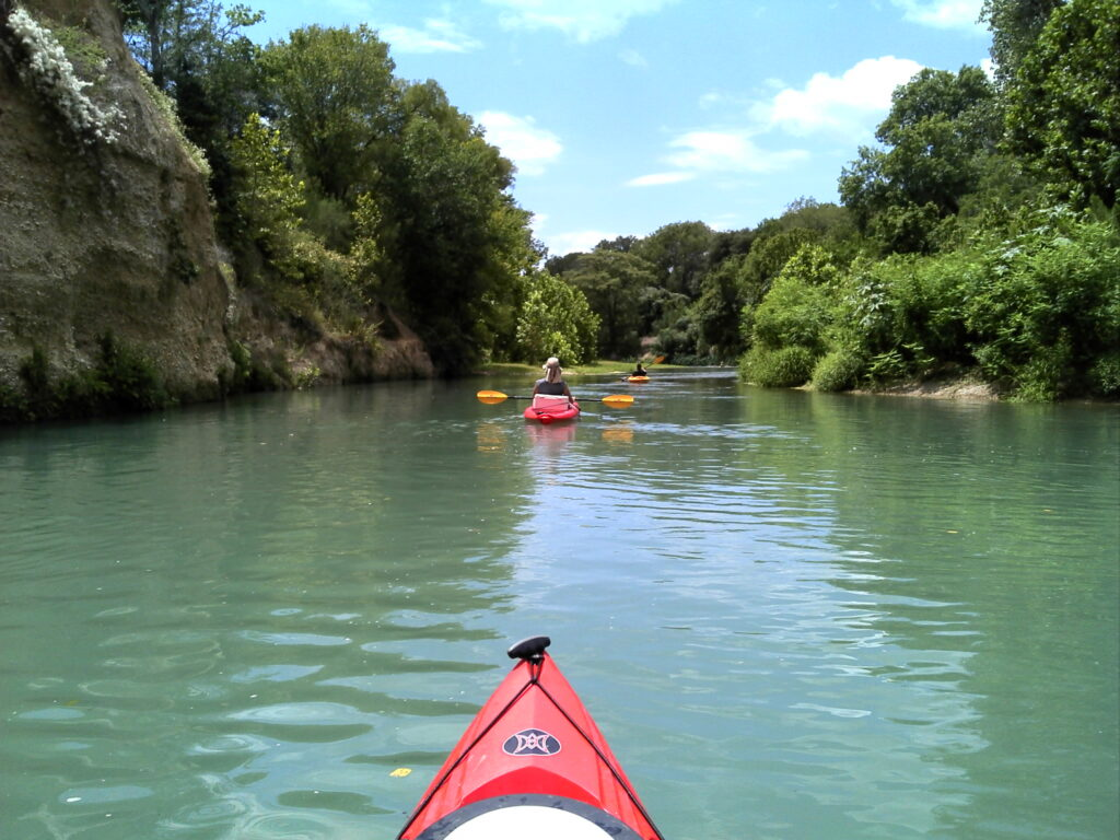 Canoeing and Kayakin in San Antonio's San Marcos River is nice and shady with these trees.