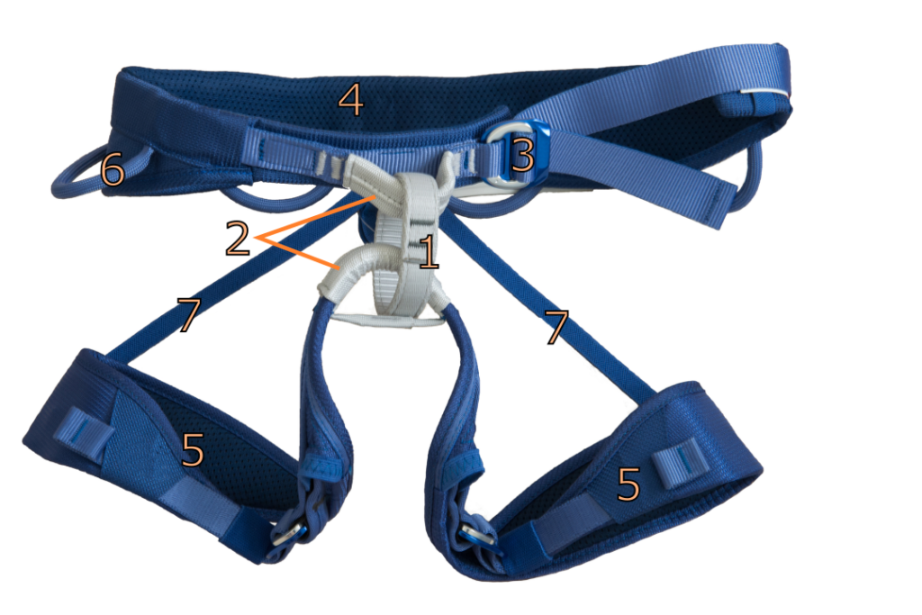 Harness with the various parts numbered